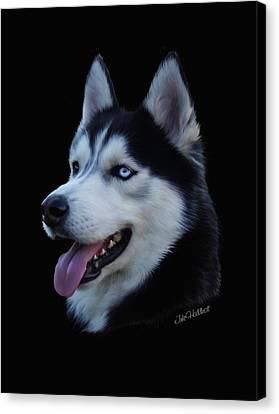 Husky Canvas Print - Apollo by Julie L Hoddinott