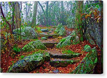 Appalachain Trail In The Clouds Canvas Print by The American Shutterbug Society