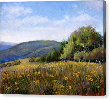 Appalachian Field Canvas Print