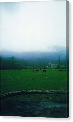 Appalachian Pasture Canvas Print by Utopia Concepts