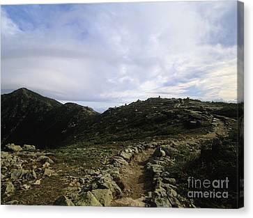 Appalachian Trail - Mount Lincoln - White Mountains New Hampshire Usa Canvas Print by Erin Paul Donovan