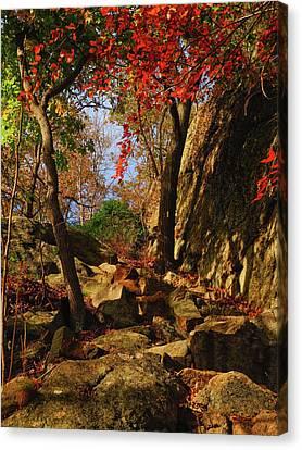 Canvas Print - Appalachian Trail Heads Up Bear Mountain by Raymond Salani III