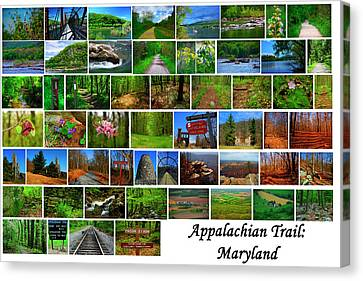 Canvas Print - Appalachian Trail Maryland by Raymond Salani III