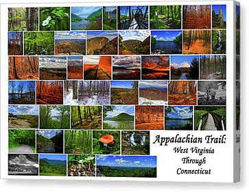 Canvas Print - Appalachian Trail West Virginia Through Connecticut by Raymond Salani III