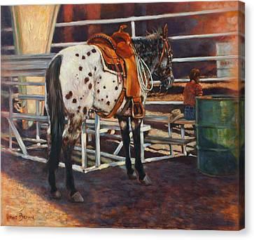 Appaloosa Canvas Print by Harvie Brown