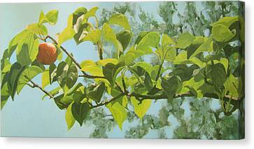 Apple A Day Canvas Print by Karen Ilari