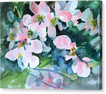 Apple Blossom Time Canvas Print by Len Stomski