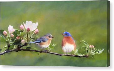 Bluebird Canvas Print - Apple Blossoms And Bluebirds by Lori Deiter