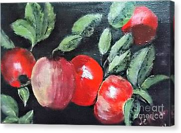 Apple Bunch Canvas Print by Francine Heykoop