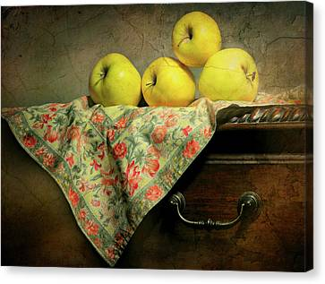 Canvas Print featuring the photograph Apple Cloth by Diana Angstadt