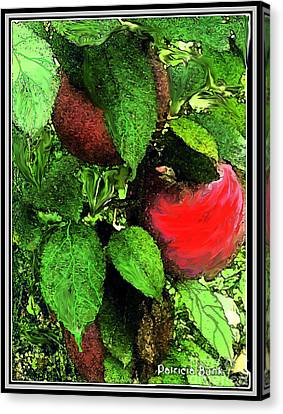 Culinary Canvas Print - Apple Harvest  by Patricia Bunk