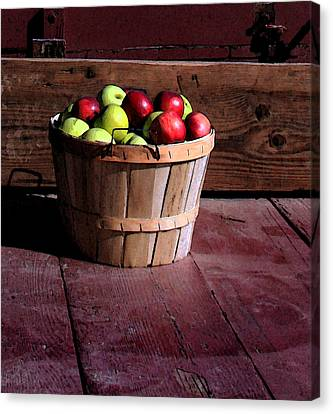 Apple Pickens Canvas Print by Joanne Coyle