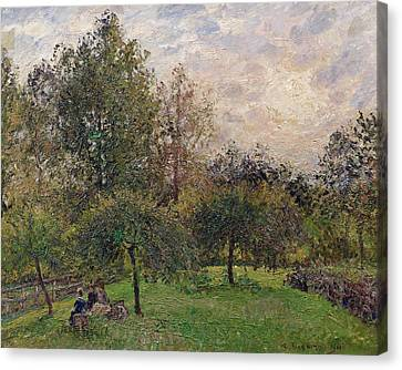 Apple Trees And Poplars In The Setting Sun Canvas Print