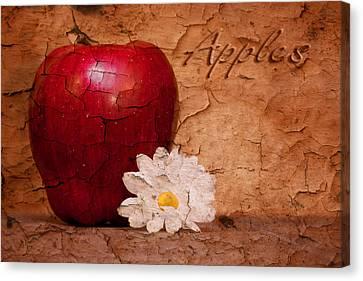 Peeling Canvas Print - Apple With Daisy by Tom Mc Nemar