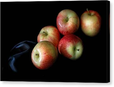 Appleanche Canvas Print by Dan Holm