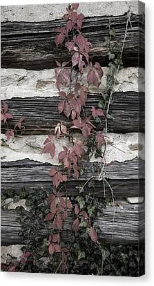 Appleberry Mountain 2 Canvas Print by Pete Hellmann
