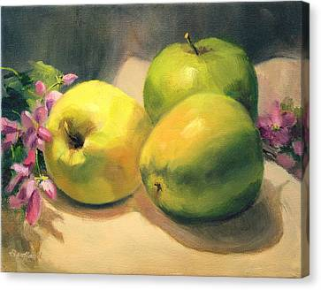 Apples And  Blossoms Canvas Print