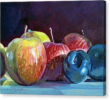 Apples And Plums  Canvas Print