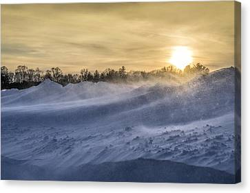 Appleton Drifts Canvas Print by Susan Stone