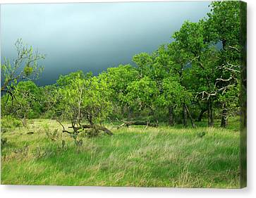 Approaching Storm Canvas Print by Bill Morgenstern