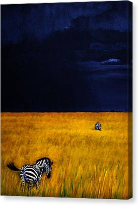 Approaching Storm Canvas Print by Edith Peterson-Watson