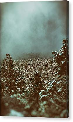 Approaching Storm Canvas Print by Jason Coward