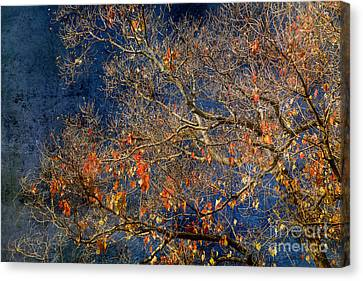 Approaching Winter Canvas Print by Russ Brown