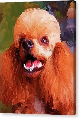 Apricot Poodle Canvas Print by Jai Johnson