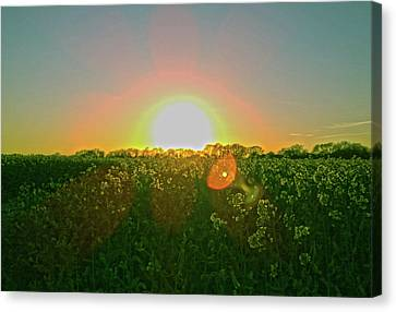 Canvas Print featuring the photograph April Sunrise by Anne Kotan