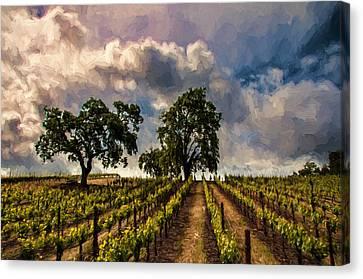 Vineyard Canvas Print - April Vines by John K Woodruff
