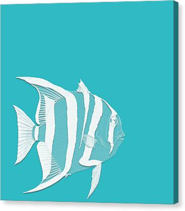 Aqua Fish  Canvas Print by Bonnie Bruno