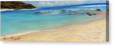 Aqua Moloa'a Canvas Print by Kenneth Grzesik