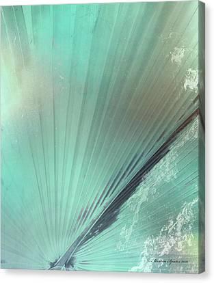 Aqua Palm Frond Rh Canvas Print