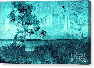 Aqua Vision Canvas Print