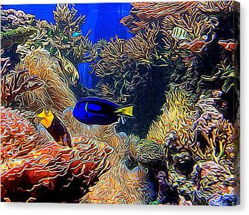 Aquarium Adventures In Abstract Canvas Print
