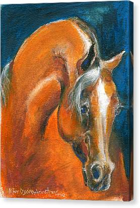 Arabian 1 Canvas Print by Mary Armstrong