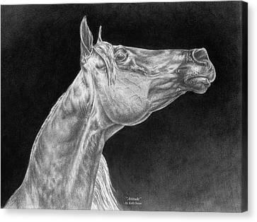 Arabian Horse Attitude Print Canvas Print by Kelli Swan