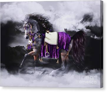 Horse In Art Canvas Print - Arabian Horse  Shaitan by Shanina Conway