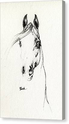 Arabian Horse Sketch 2014 05 29d Canvas Print
