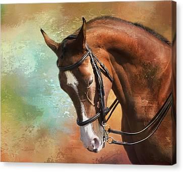 Arabian Horse Canvas Print by Theresa Tahara