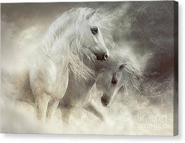 Arabian Horses Sandstorm Canvas Print by Shanina Conway