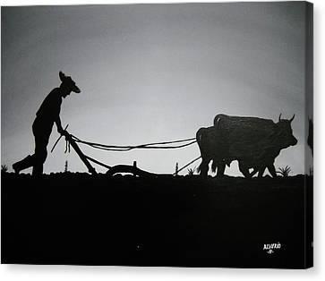 Arando Con Bueyes Canvas Print by Edwin Alverio
