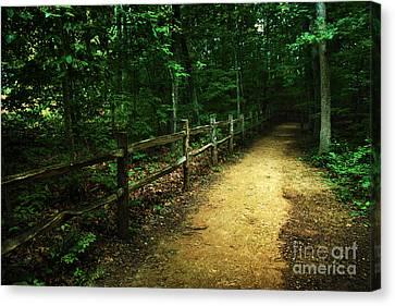 Arboretum Trail 2 Canvas Print