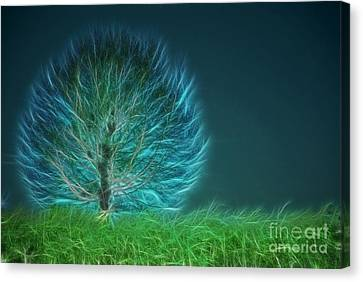 Tree Art Canvas Print - Arbrensens - A19 by Variance Collections