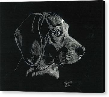 Archie Canvas Print by Norma Rowley