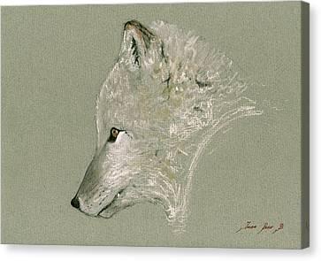 Arctic Fox Head Canvas Print