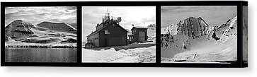Arctic Triptych Canvas Print by Terence Davis