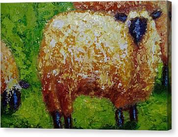 Aren't Ewe Cute Canvas Print