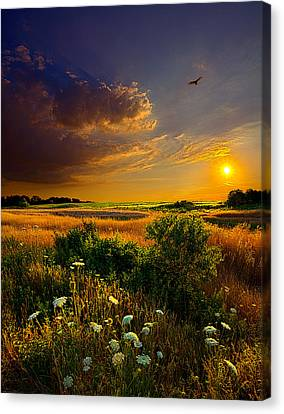 Aridity Canvas Print by Phil Koch
