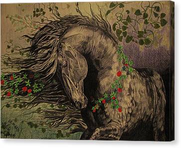 Canvas Print featuring the drawing Aristocratic Horse by Melita Safran